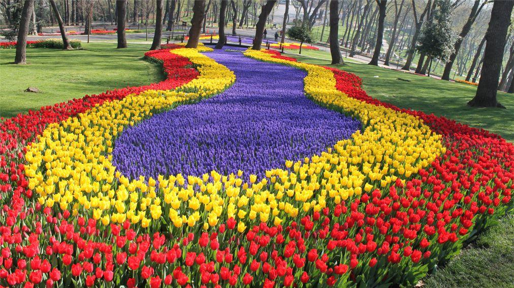Фестиваль тюльпанов в Стамбуле http://travelcalendar.ru/wp-content/uploads/2015/05/Festival-tyulpanov-v-Stambule_glav1.jpg