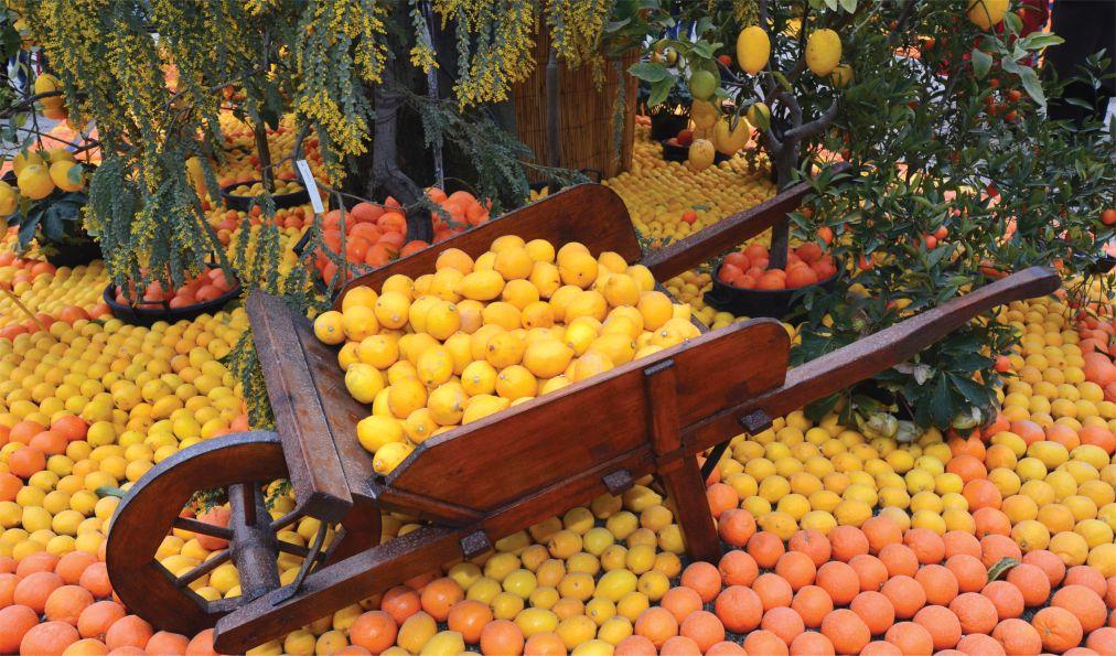 Фестиваль лимонов в Ментоне http://travelcalendar.ru/wp-content/uploads/2015/06/Festival-limonov-v-Mentone_glav3.jpg