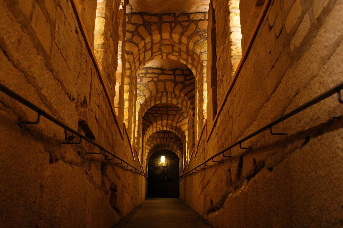 Выставка «Море в Париже, 45 миллионов лет назад» http://travelcalendar.ru/wp-content/uploads/2015/06/Vystavka-More-v-Parizhe-45-millionov-let-nazad-.jpg