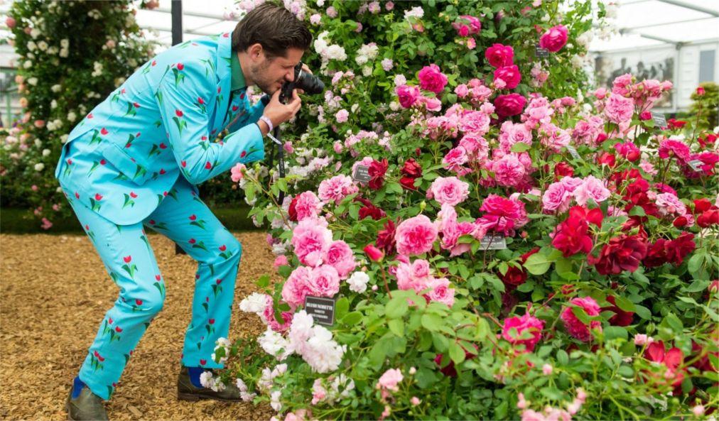 Выставка цветов в Челси http://travelcalendar.ru/wp-content/uploads/2015/06/Vystavka-tsvetov-v-CHelsi_glav7.jpg