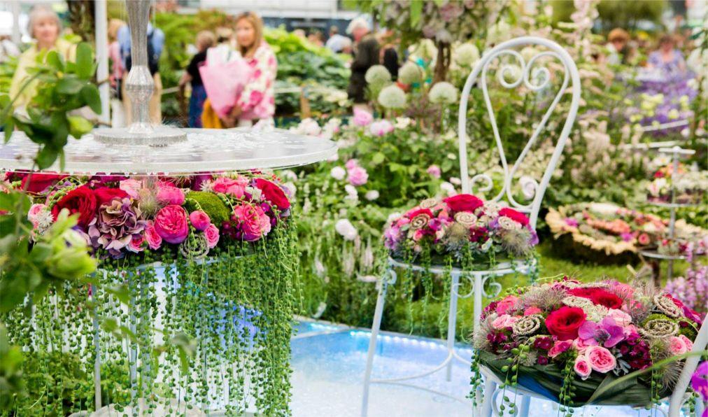 Выставка цветов в Челси http://travelcalendar.ru/wp-content/uploads/2015/06/Vystavka-tsvetov-v-CHelsi_glav8.jpg