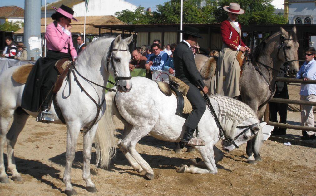 Национальная конная ярмарка в Голегане http://travelcalendar.ru/wp-content/uploads/2015/07/Natsionalnaya-konnaya-yarmarka-v-Golegane_glav1.jpg