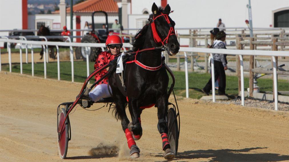 Национальная конная ярмарка в Голегане http://travelcalendar.ru/wp-content/uploads/2015/07/Natsionalnaya-konnaya-yarmarka-v-Golegane_glav4.jpg