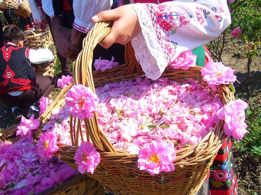Фестиваль розы в Казанлыке http://travelcalendar.ru/wp-content/uploads/2015/07/photo.jpg
