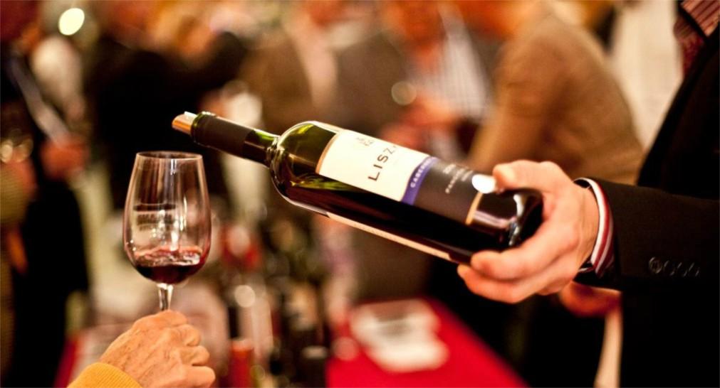 Фестиваль молодого вина и сыра в Будапеште http://travelcalendar.ru/wp-content/uploads/2015/08/Festival-molodogo-vina-i-syra-v-Budapeshte_glav1.jpg
