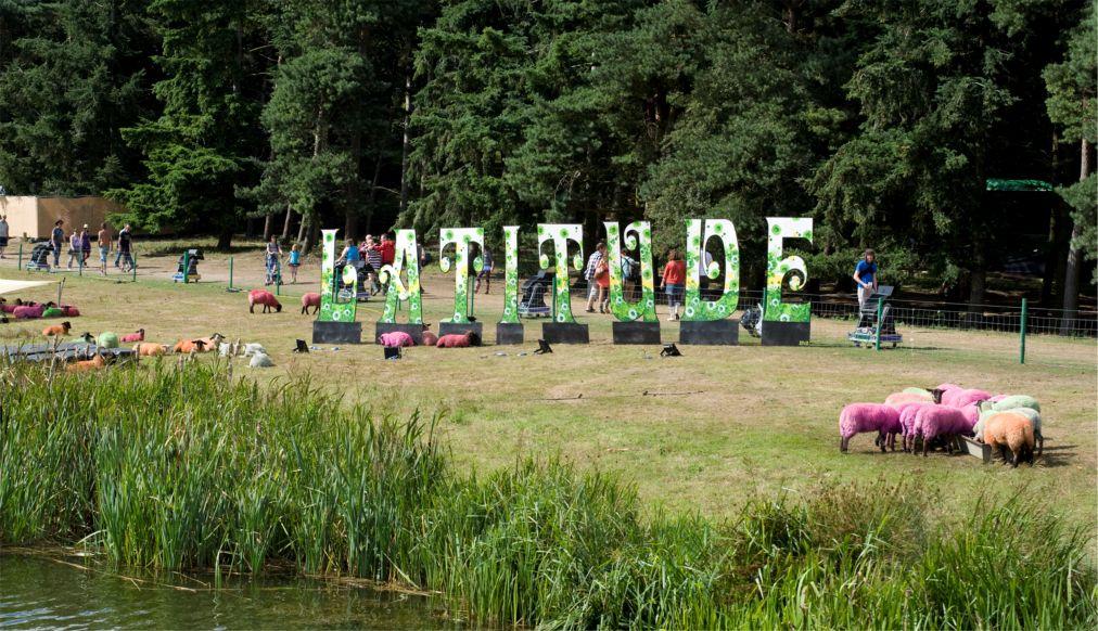 Музыкальный фестиваль Latitude в Саффолке http://travelcalendar.ru/wp-content/uploads/2015/08/Muzykalnyj-festival-Latitude-v-Saffolke_glav1.jpg