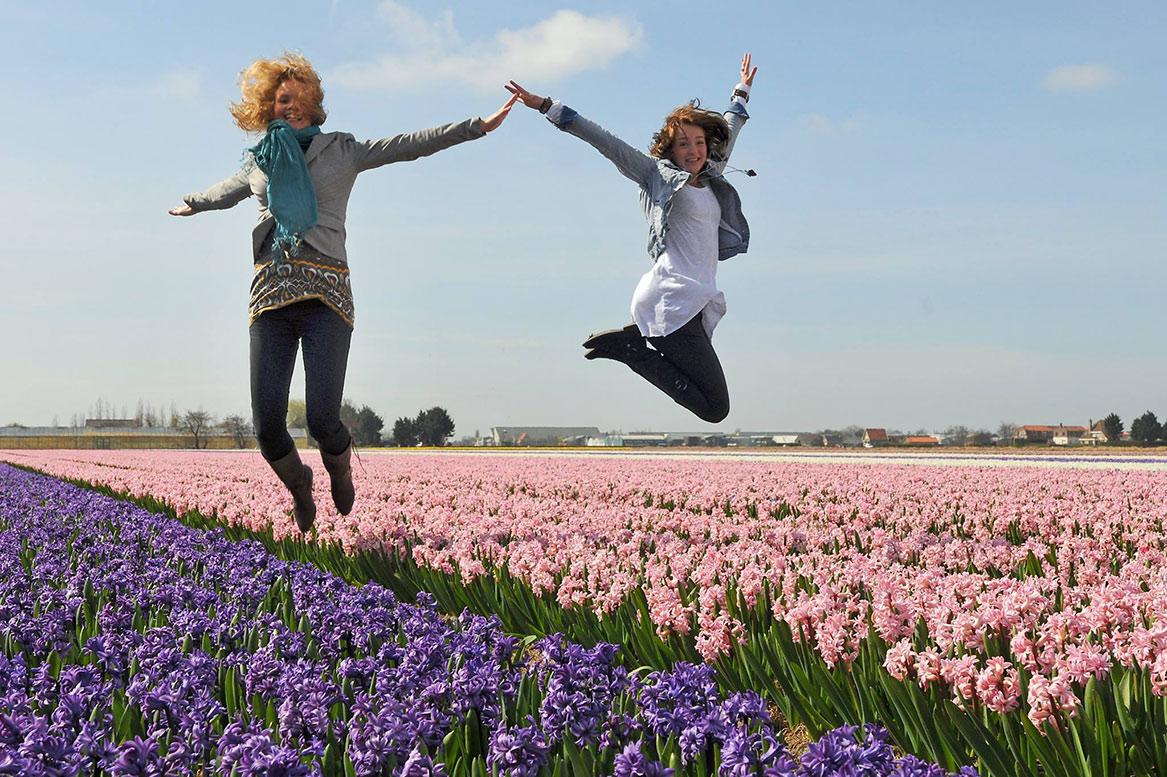 Парад цветов Bollenstreek в Нидерландах http://travelcalendar.ru/wp-content/uploads/2015/08/PARAD-TSVETOV-V-NIDERLANDAH7.jpg
