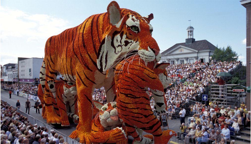 Парад цветов Bollenstreek в Нидерландах http://travelcalendar.ru/wp-content/uploads/2015/08/PARAD-TSVETOV-V-NIDERLANDAH_glav1.jpg