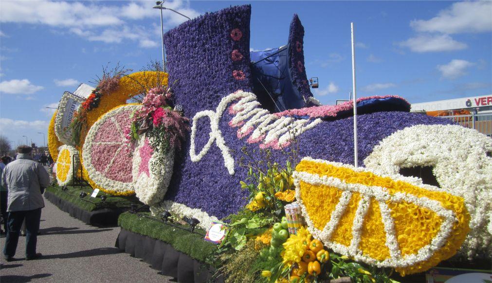 Парад цветов Bollenstreek в Нидерландах http://travelcalendar.ru/wp-content/uploads/2015/08/PARAD-TSVETOV-V-NIDERLANDAH_glav5.jpg