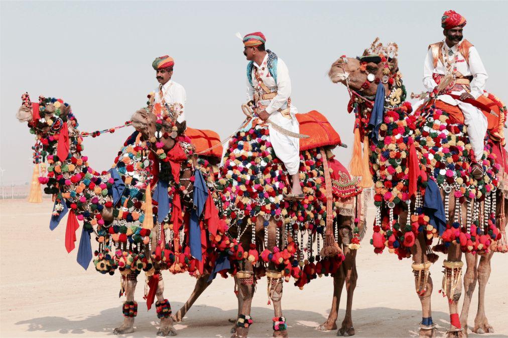 Ярмарка верблюдов в Пушкаре http://travelcalendar.ru/wp-content/uploads/2015/09/YArmarka-verblyudov-v-Pushkare_glav1.jpg