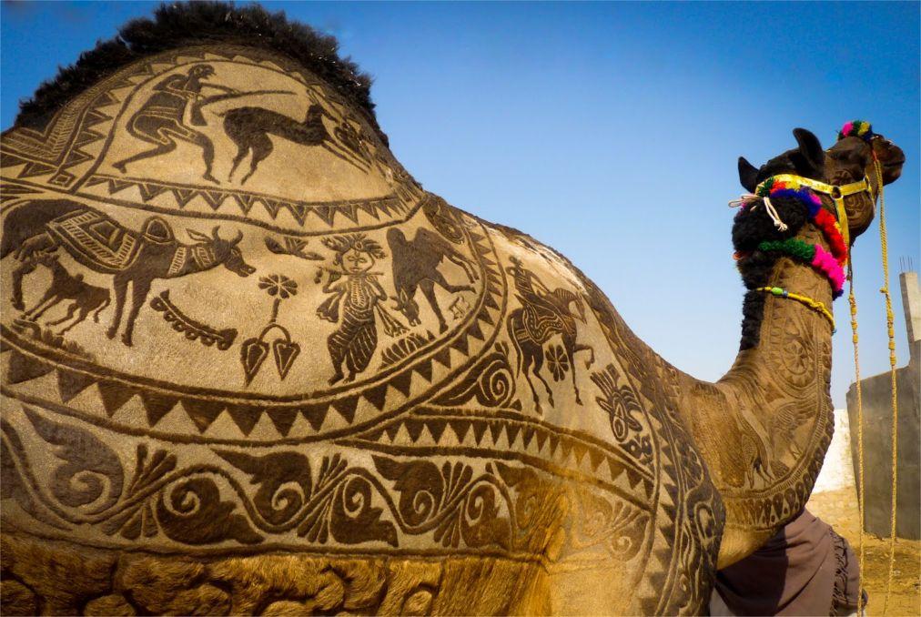 Ярмарка верблюдов в Пушкаре http://travelcalendar.ru/wp-content/uploads/2015/09/YArmarka-verblyudov-v-Pushkare_glav3.jpg