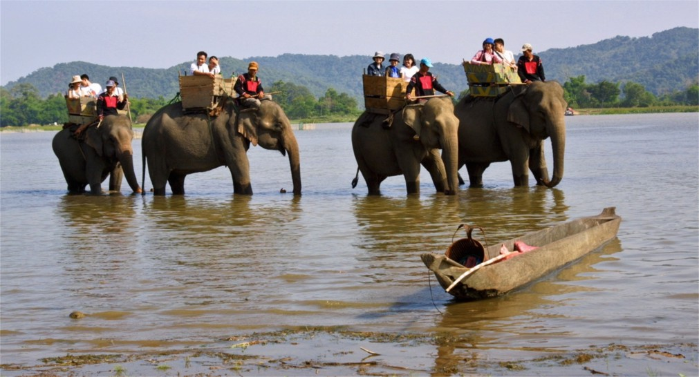 Гонки слонов в Бан Дон http://travelcalendar.ru/wp-content/uploads/2015/10/Gonki-slonov-v-Ban-Don_glav2.jpg