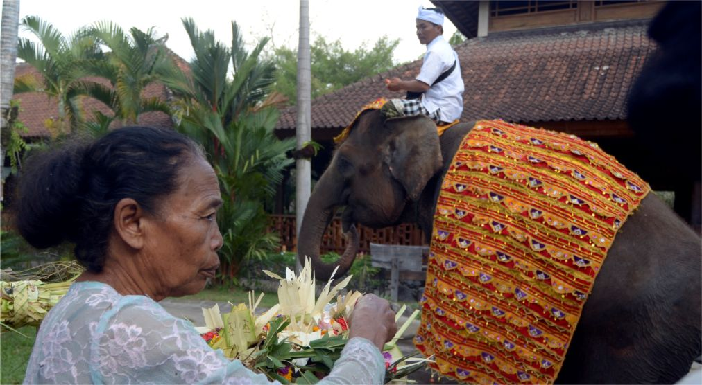 Праздник Перанг Топат на Ломбоке http://travelcalendar.ru/wp-content/uploads/2015/10/Prazdnik-Perang-Topat-na-Lomboke_glav2.jpg