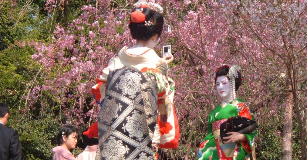 Фестиваль цветения сакуры в Токио http://travelcalendar.ru/wp-content/uploads/2015/11/Festival-tsveteniya-sakury-v-Tokio_glav2.jpg