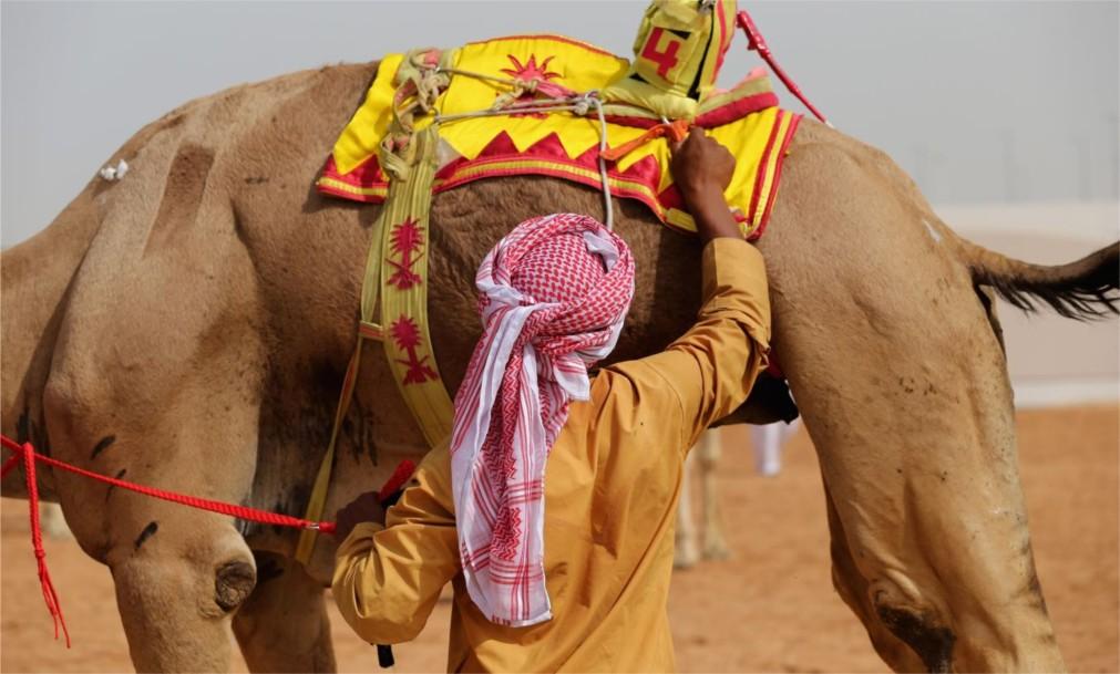 Фестиваль наследия Аль Мармум в Дубае http://travelcalendar.ru/wp-content/uploads/2015/12/Festival-naslediya-Al-Marmum-v-Dubae_glav2.jpg