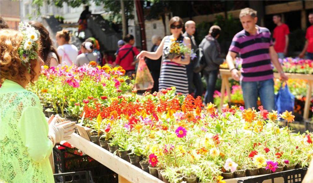 Фестиваль цветов в Тбилиси http://travelcalendar.ru/wp-content/uploads/2016/01/Festival-tsvetov-v-Tbilisi_glav5.jpg
