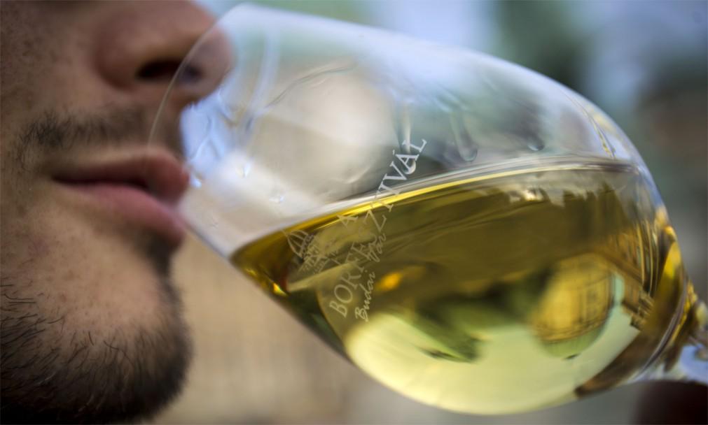 Международный фестиваль вина в Будапеште http://travelcalendar.ru/wp-content/uploads/2016/02/Mezhdunarodnyj-festival-vina-v-Budapeshte_glav3.jpg