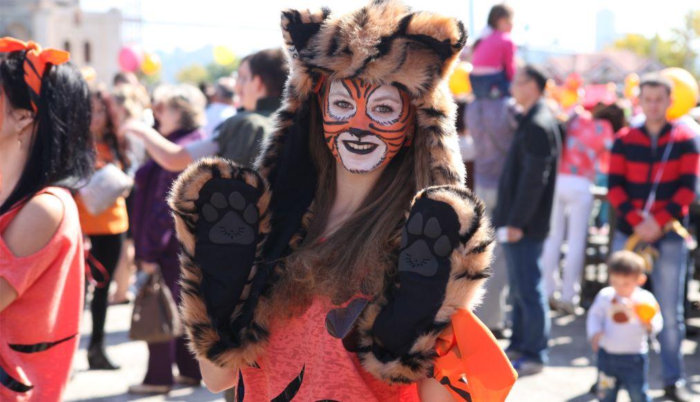 День тигра во Владивостоке http://travelcalendar.ru/wp-content/uploads/2016/03/Den-tigra-vo-Vladivostoke_glav6.jpg