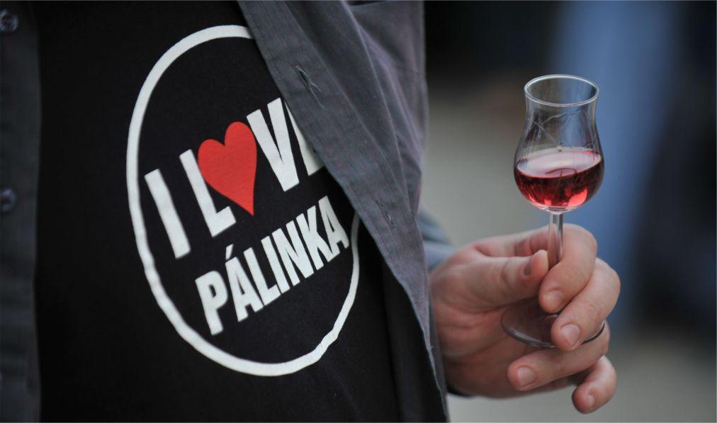 Фестиваль палинки в Будапеште http://travelcalendar.ru/wp-content/uploads/2016/03/Festival-palinki-v-Budapeshte_glav3.jpg