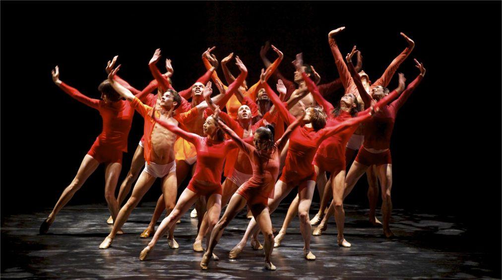 Международный Фестиваль балета Dance Open в Санкт-Петербурге http://travelcalendar.ru/wp-content/uploads/2016/03/Mezhdunarodnyj-Festival-baleta-Dance-Open-v-Sankt-Peterburge_glav3.jpg