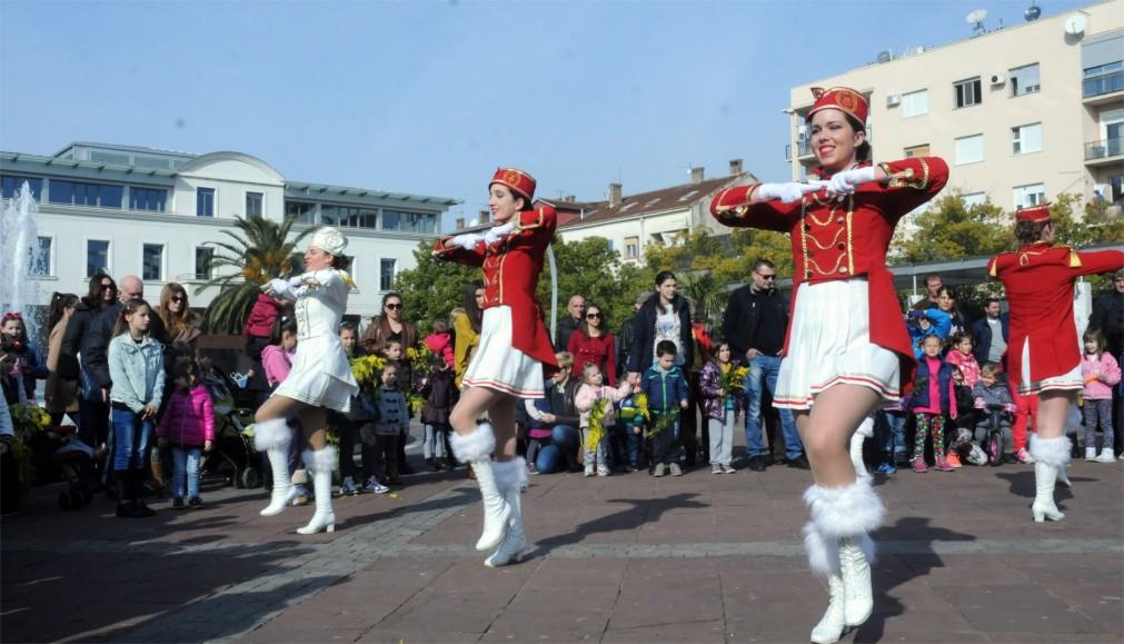 Праздник Мимозы в Герцег-Нови http://travelcalendar.ru/wp-content/uploads/2016/03/Prazdnik-Mimozy-v-Gertseg-Novi_glav3.jpg