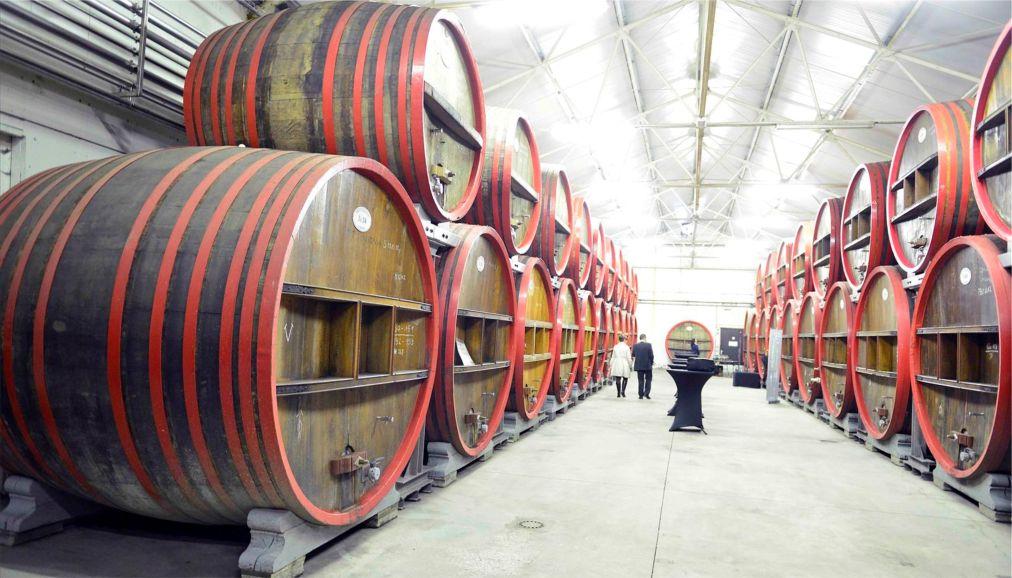 Фестиваль бельгийского пива «Тур де гёз» в Пайоттенланде http://travelcalendar.ru/wp-content/uploads/2016/04/Festival-belgijskogo-piva-Tur-de-gyoz-v-Pajottenlande_glav2.jpg