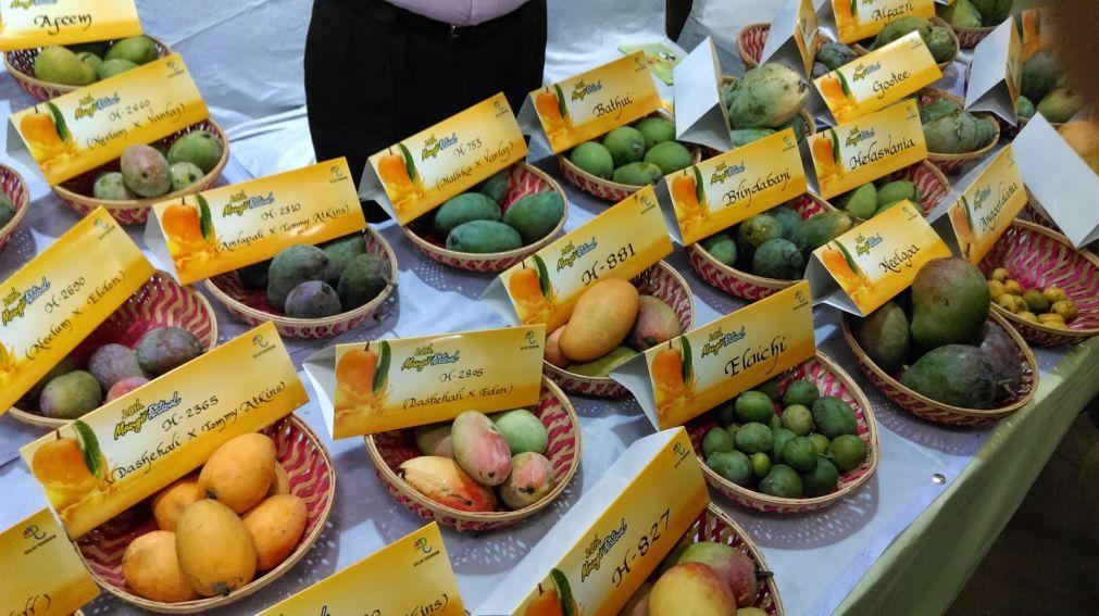 Международный фестиваль манго в Дели http://travelcalendar.ru/wp-content/uploads/2016/05/Mezhdunarodnyj-festival-mango-v-Deli_glav2.jpg