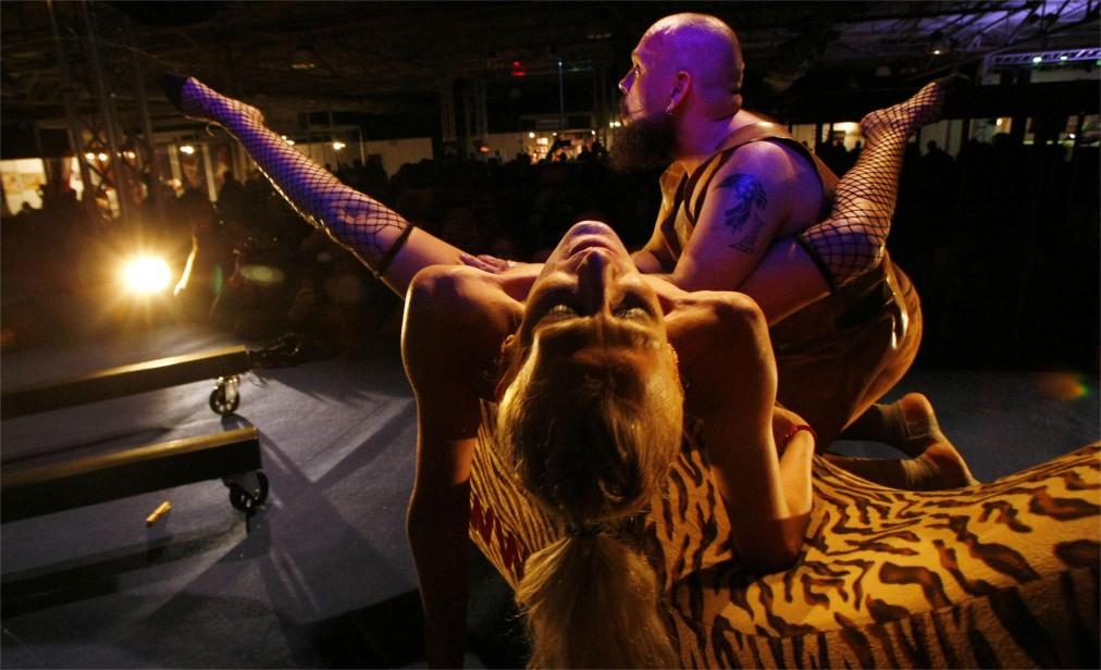Международная выставка Salon Erotico в Барселоне http://travelcalendar.ru/wp-content/uploads/2016/06/Mezhdunarodnaya-vystavka-Salon-Erotico-v-Barselone_glav5.jpg