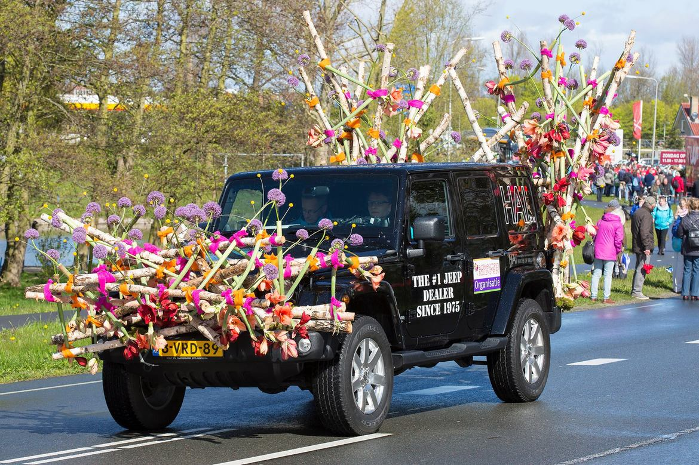 Парад цветов Bollenstreek в Нидерландах 00a831f02d1cc9c30b4641b02fd79a52.jpg