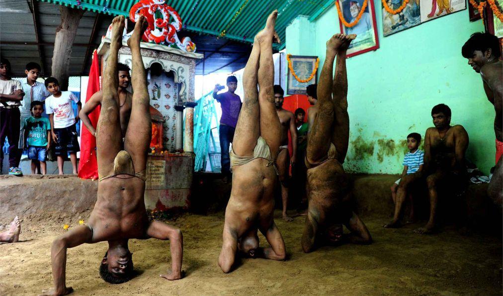 Фестиваль кобр Наг Панчами в Индии 04b017a6bc678a0246e64a638067bab8.jpg