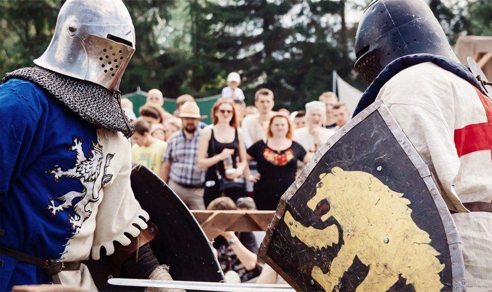 Фестиваль средневековой культуры «Наш Грюнвальд» в Дудутках 05b9b294bdb923a667d7885bc8997a66.jpg
