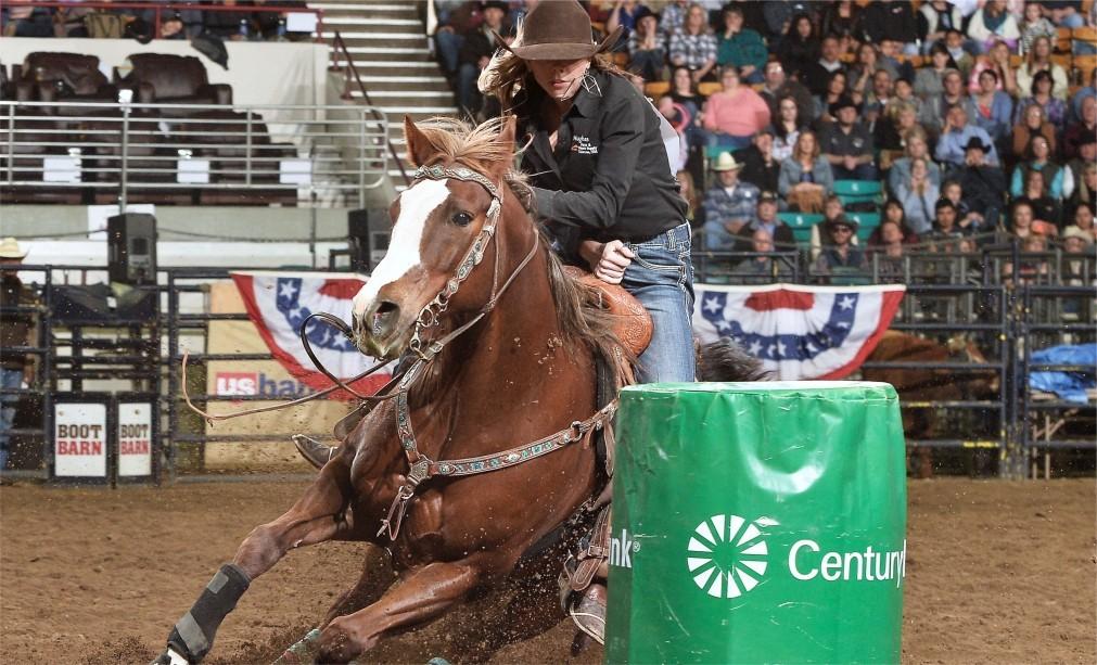 Национальная выставка домашнего скота и родео в Денвере 08760651413a16844351758e96e902b6.jpg