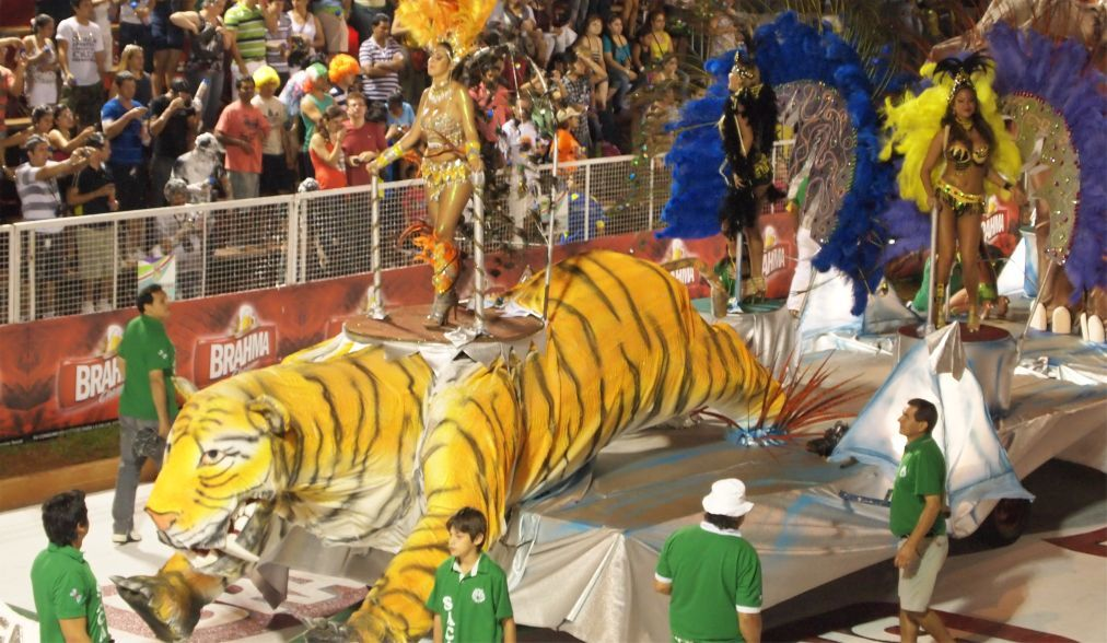 Карнавал в Энкарнасьоне 109af30a608b445688128db20cf34291.jpg