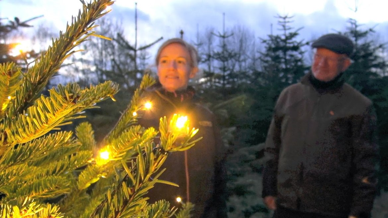 Рождественская ярмарка «Тиволи Гарденс» в Копенгагене 158ae4d57854d867a9987f6a90a2ebc8.jpg