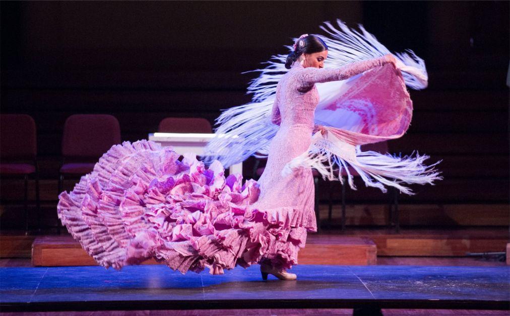 Шоу Gran Gala Flamenco в Барселоне 179c0e7780ebd3ec492d8bb41ab80d98.jpg