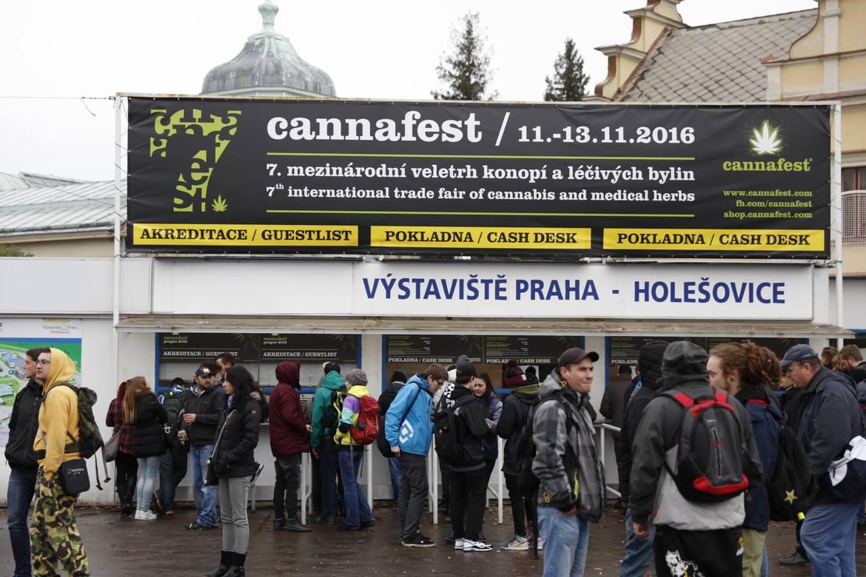 Международная ярмарка конопли Cannafest в Праге 183260c0e120e07bb6f1d470124a7d58.jpg