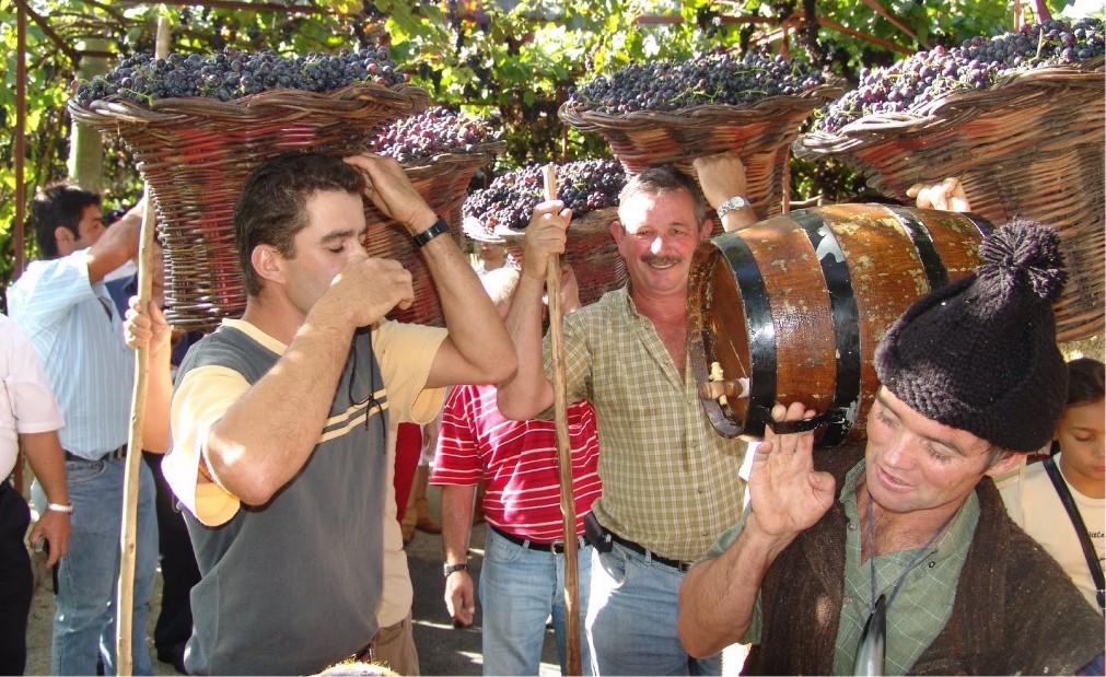 Фестиваль вина на Мадейре 20109f51df96dde7b545797472caed25.jpg