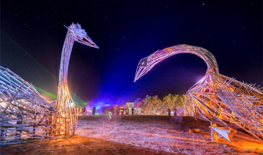 Фестиваль электронной музыки «Rainbow Serpent» в Лекстоне 207774828bdebe853aa1437f861a7e0e.jpg