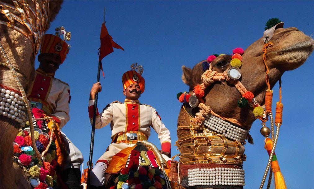 Биканерский фестиваль верблюдов 23435c625807248b19a56b904f33c62b.jpg
