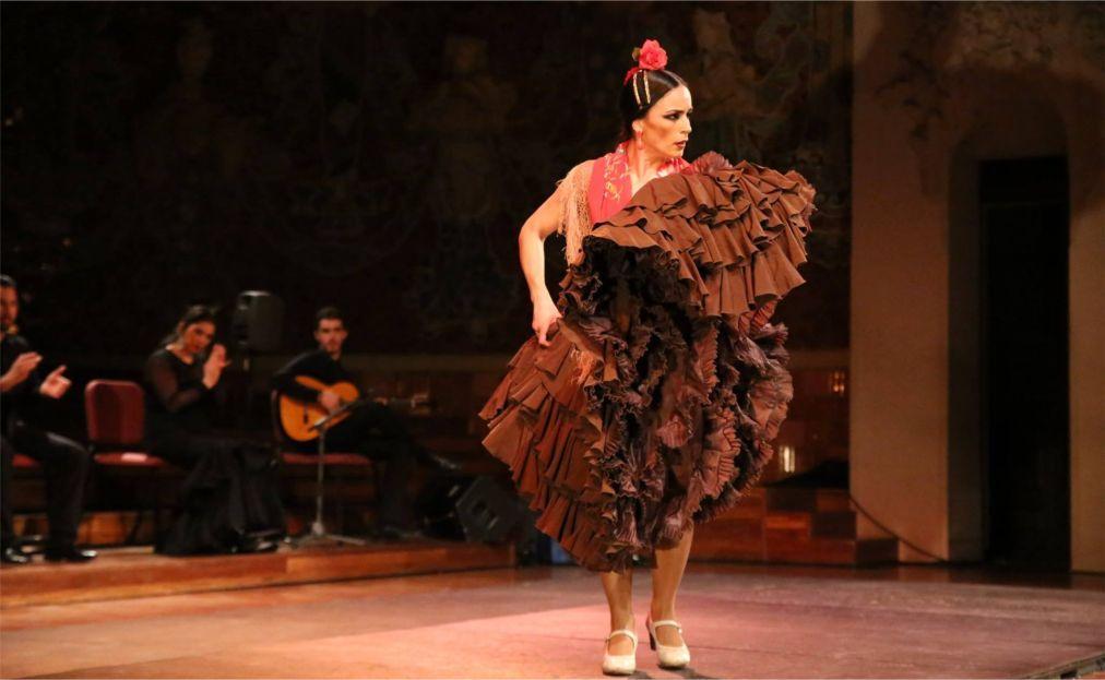Шоу Gran Gala Flamenco в Барселоне 2a1b7b278706eaa5c7192bee593c1b68.jpg