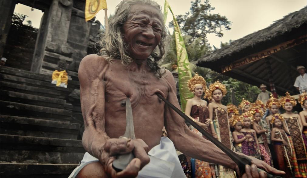 Фестиваль боёв Усаба Самба на Бали 2e8382997ffc29395039b3befca88c8b.jpg