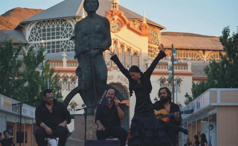 Международный фестиваль фламенко Cante de las Minas  в Ла-Уньоне 364ec6a79c3e929963dfd3effad82ac4.jpg