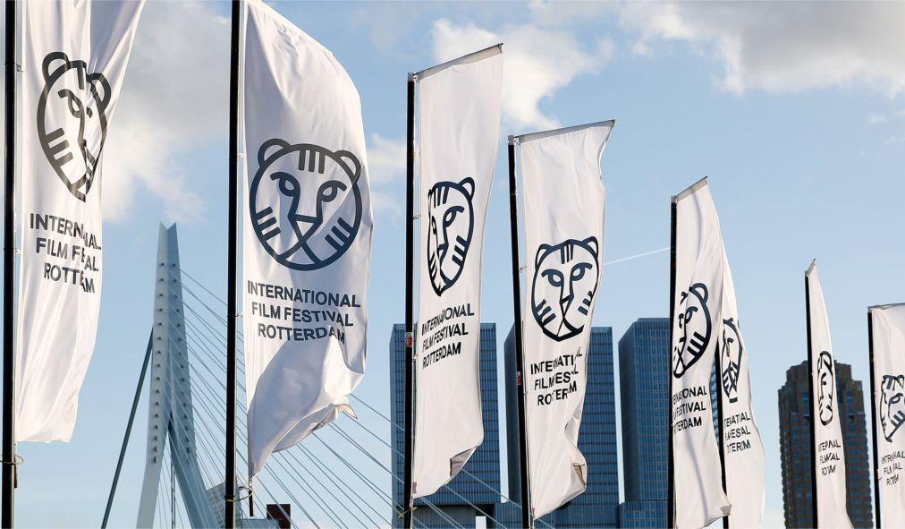 Международный Роттердамский кинофестиваль 3dfb77c9e17f2c38415d7649a729d3a4.jpg