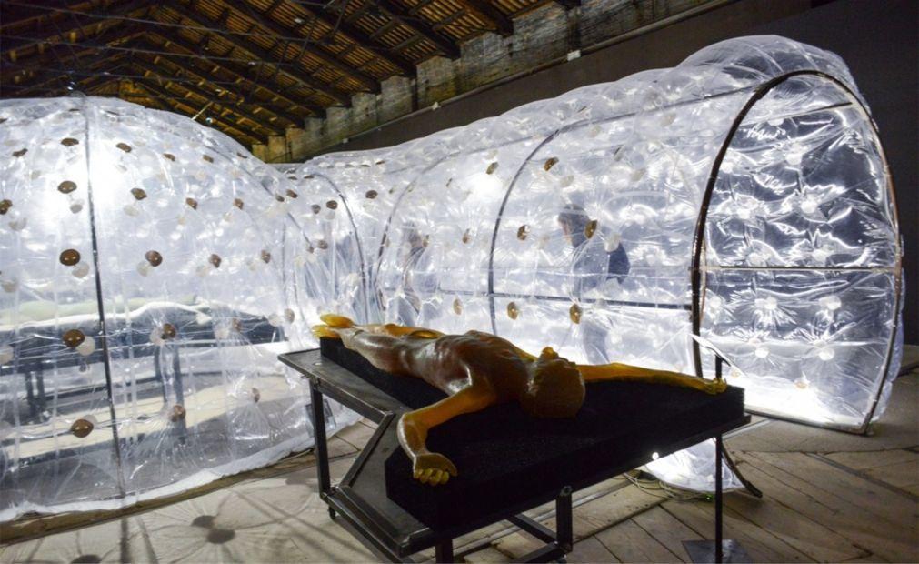 Венецианская биеннале 45c6e3928a761f8dd668275a7807b001.jpg