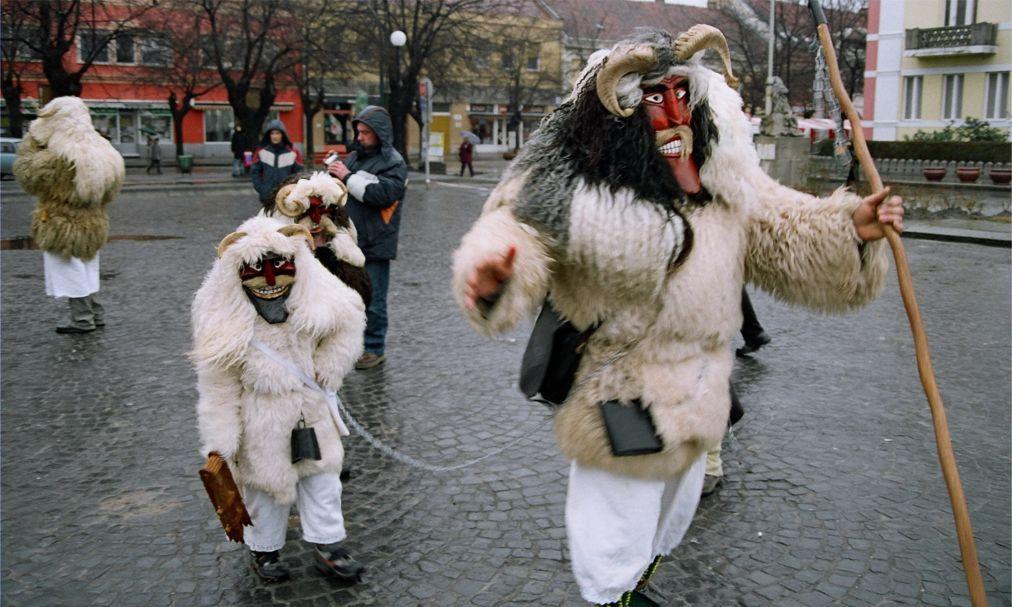 Фестиваль масок «Бушо» в Мохаче 48d5ea5ac2c79fd4441413af7c058c2d.jpg