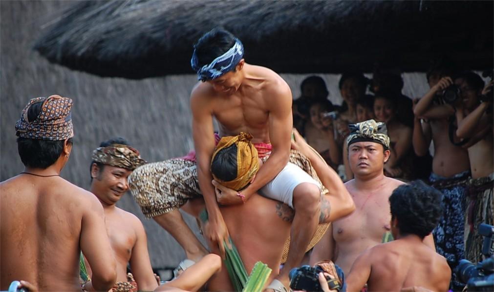 Фестиваль боёв Усаба Самба на Бали 4948a8020f38dcf60bd65dc239228cc7.jpg