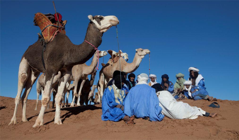 Международный Фестиваль Сахары в Дузе 5bc3578b572f808e5270e50ade2d033b.jpg