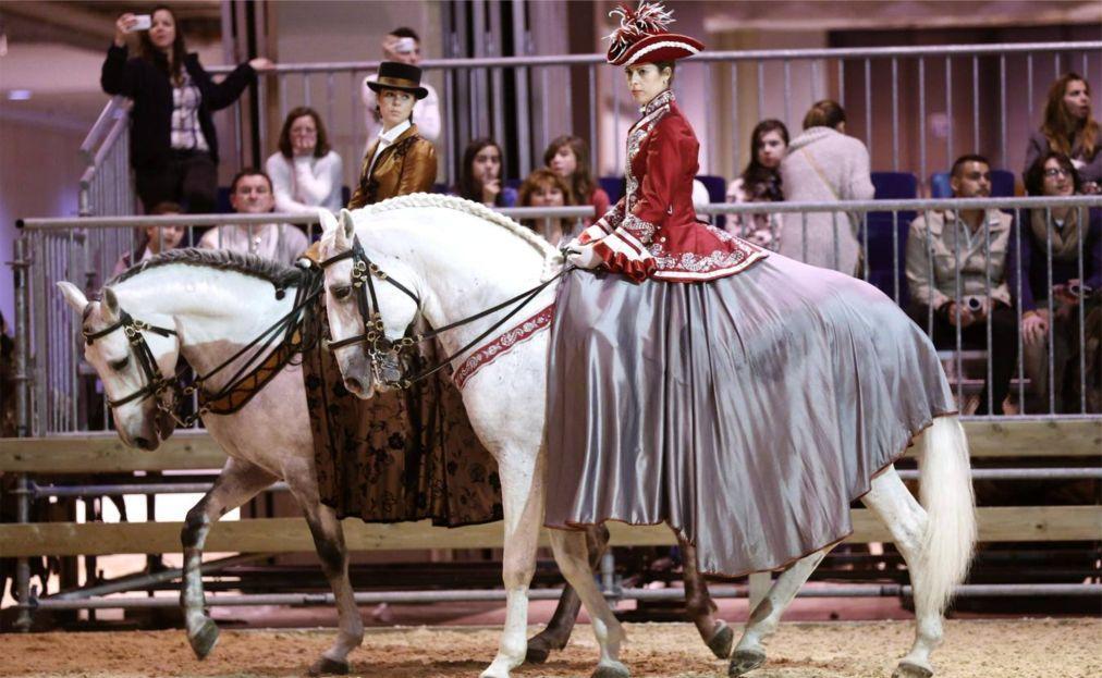 Конное шоу Madrid Horse Week в Мадриде 5d9cc4b69473b8e4caacfadf1bc326e4.jpg