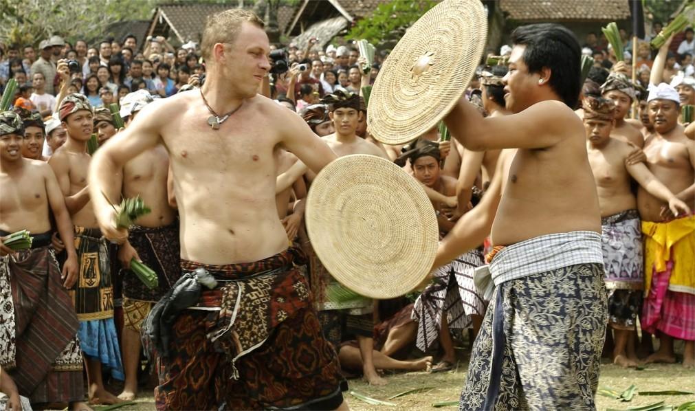 Фестиваль боёв Усаба Самба на Бали 610e56af21e2a56071eca3115c1696f5.jpg