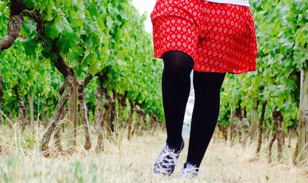 Фестиваль вина в Рюдесхайм-на-Рейне 66409e438bf5e2e9e222c15675f2cc82.jpg